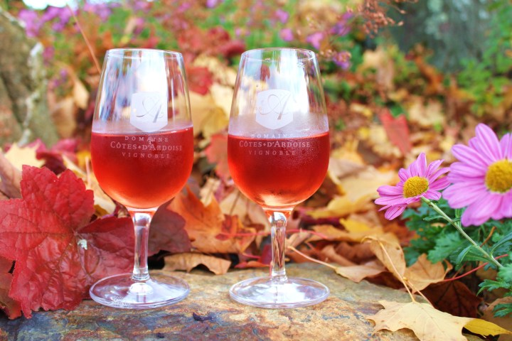 Quebec's Wine Route: A Mother-Daughter Road Trip Through the Colours of Fall