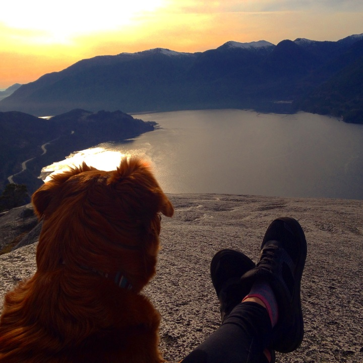 5 Dog-Friendly Incredible Hikes in the Sea-to-Sky Corridor
