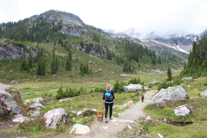 Brandywine Meadows – Whistler,BC